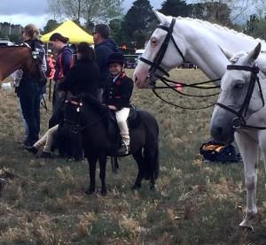 Tiny tot on a horse