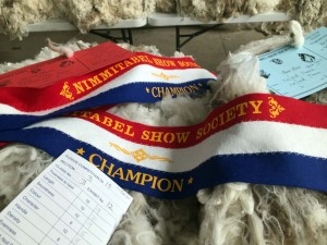 champion wool exhibit