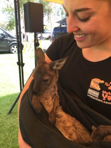 Wodonga Animal Nursery