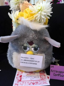 Display Cooma Show